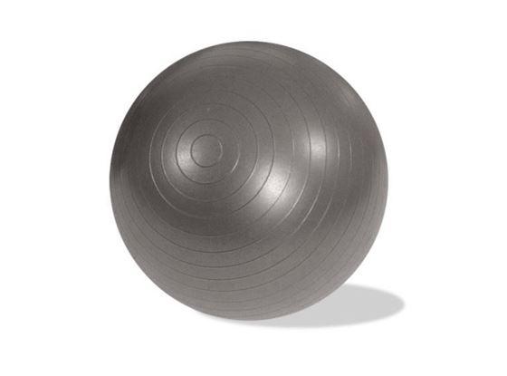 """תמונה של כדור פיזיו קוטר 65 ס""""מ"""